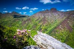 Linville-Wanderung 4 Lizenzfreies Stockfoto