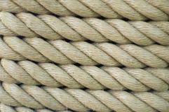 liny zdjęcia royalty free