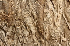 Liny stone texture. Stone surface with textural features Royalty Free Stock Photography