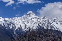 Linzhi INDUS Royalty Free Stock Images