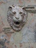 Lion& x27; 在墙壁上的s头 结构上大厦详细资料屋顶 库存照片
