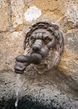 以lion& x27的形式老喷泉; s头 免版税库存照片