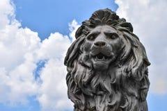 lion& x27的特写镜头; s头雕象 免版税库存图片