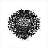 lion Royaltyfri Foto