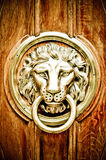 Lion. The door handle in the form of a lion Royalty Free Stock Photos