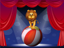 A lion above a hot air balloon Royalty Free Stock Images
