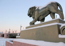 Lion of the Admiralty in Saint_petersburg Stock Photos