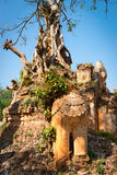 Lion in ancient Burmese Buddhist pagodas Stock Image
