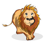 Lion. Angry lion look ahead and walking Royalty Free Stock Photos