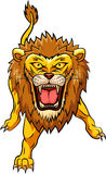 Lion angry mascot Stock Photos