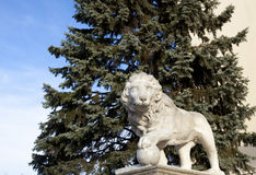 Lion Architecture 2 Immagine Stock