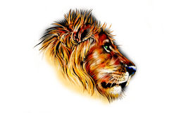 Lion art illustration color Stock Photography