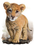 Lion baby vector illustration