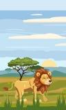 Lion on the background of the African landscape, savanna. Cartoon style, vector illustration Stock Photo