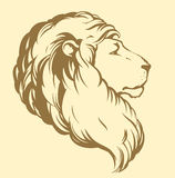 lion bakgrund som tecknar den blom- gräsvektorn Royaltyfria Foton