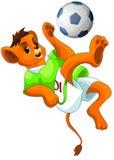 Lion ball footbal clipart cartoon style  illustration Stock Photos