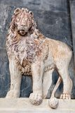 Lion bas-relief Stock Images