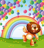 A lion below the floating balloons with a rainbow Royalty Free Stock Photos
