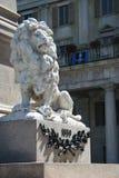 Lion Bergamo Lombardy Italy Stock Images