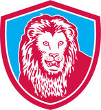 Lion Big Cat Head Shield retro Immagine Stock Libera da Diritti
