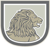 Lion Big Cat Head Side Shield Royalty Free Stock Photography