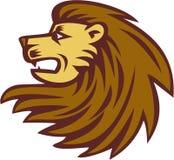 Lion Big Cat Head Woodcut Fotografia Stock Libera da Diritti