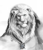 Lion_blue oczy Fotografia Stock