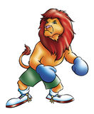 Lion boxer Royalty Free Stock Images