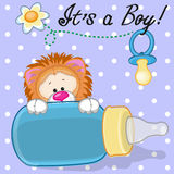 Lion boy Royalty Free Stock Photography