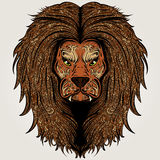 Lion brown colored Royalty Free Stock Photo