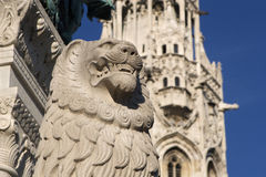 Lion from budapest Royalty Free Stock Images