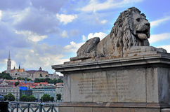 Lion and Budapest old town Stock Images