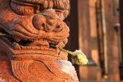 Lion of Buddha and rose Royalty Free Stock Photography