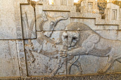 Lion and bull relief detail in Persepolis Royalty Free Stock Image