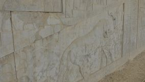 Lion and bull relief detail in Persepolis. Lion and bull stone bas-relief detail in the old city Persepolis stock video footage