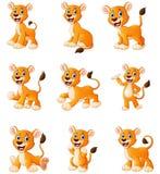 Lion cartoon set collection Stock Images