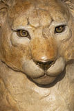 Lion Carving. In Santa Fe, New Mexico Stock Image