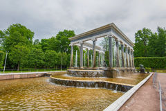 The Lion Cascade fountain in Petergof fountain and Grand Palace in Petergof Royalty Free Stock Photography
