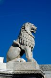Lion at the Castle District, Budapest, Hungary. A stone lion on Fisherman's Bastion, the landmark of the Hungarian capital city, Budapest Royalty Free Stock Photo