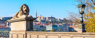 Lion of Chain Bridge, Buda castle in background, Budapest, Hungary Stock Photography