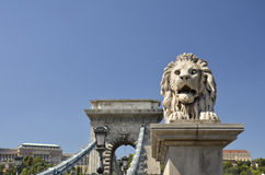 Lion and the Chain Bridge, Budapest. 2 Royalty Free Stock Photos