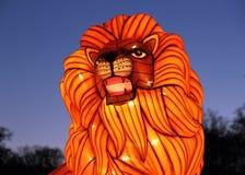 Lion chez Longleat photo stock