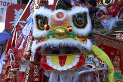 Lion chinois 2 d'an neuf Photos stock