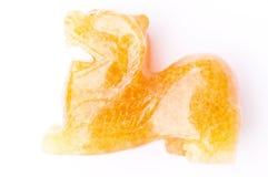 Lion chinois de gardien photographie stock