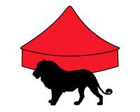 Lion in circus. Detailed and colorful illustration of lion in circus Stock Image
