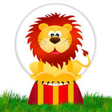 Lion in the circus Royalty Free Stock Photo