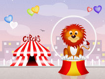 Lion at circus. Illustration of funny lion in the circus Stock Images
