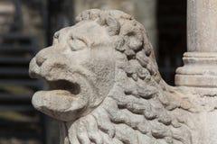 Lion in the city of Bergamo Royalty Free Stock Photos
