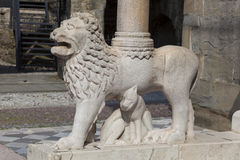 Lion in the city of Bergamo Stock Photography