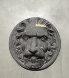 Lion classic architectural element hanging on garden wall Royalty Free Stock Images